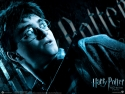 hp6_wallpaper_02_800x600.jpg